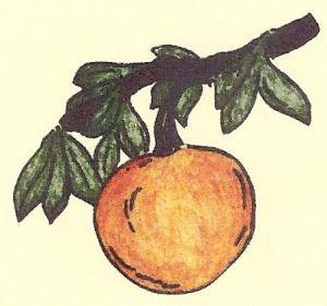 oranjeappel